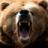 A Freaking BEAR