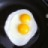Green Acres Grass Fed Eggs profile image