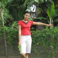 Thai Hoang