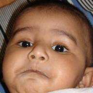mahdi Hassan